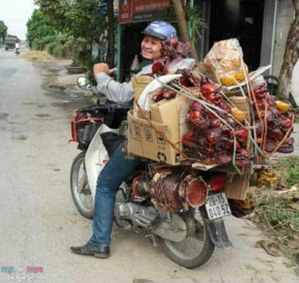 buddha bike