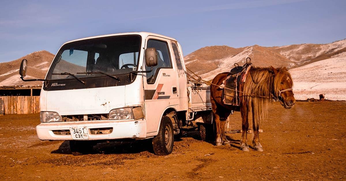 car-old-animal-transportation-transport-truck