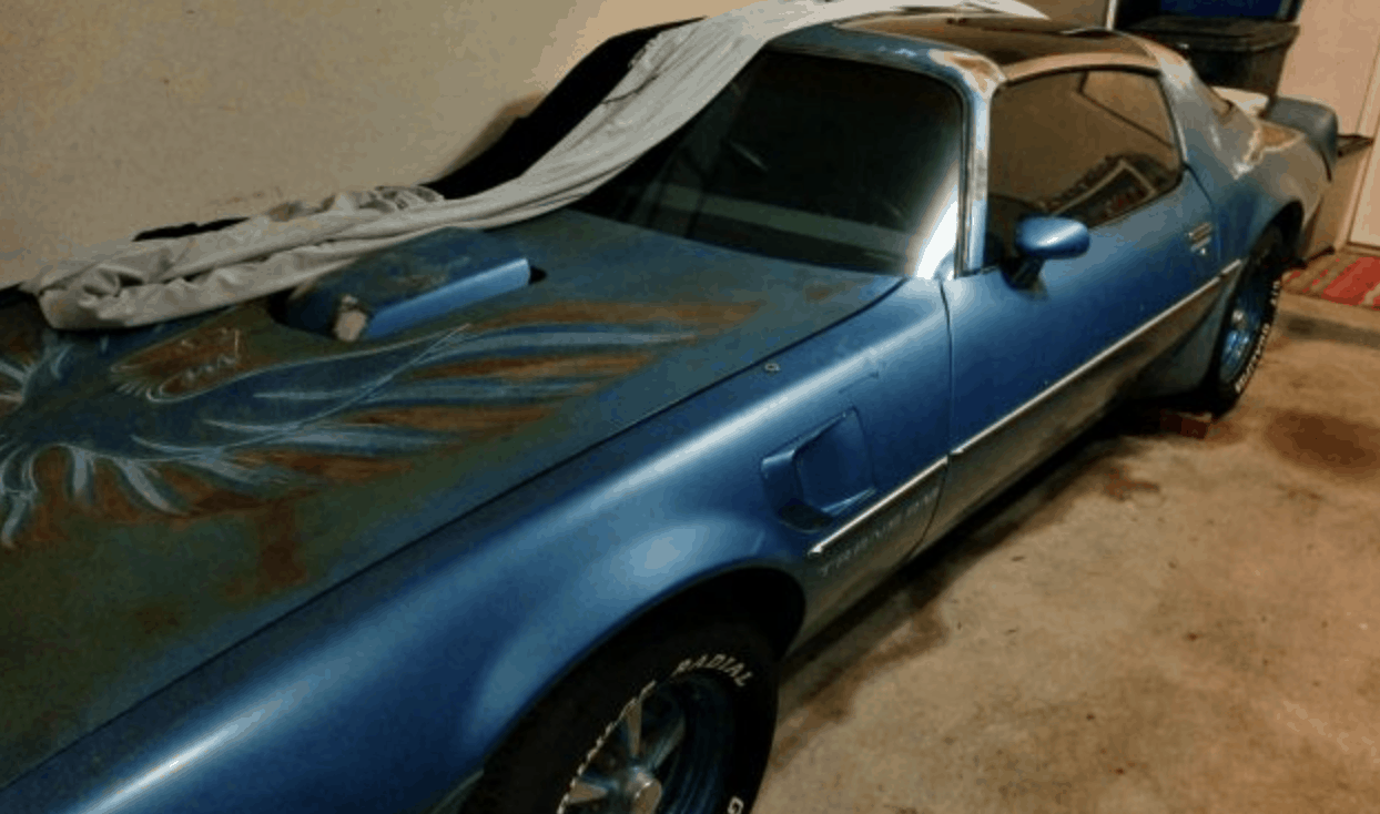 1979 Firebird barn finds