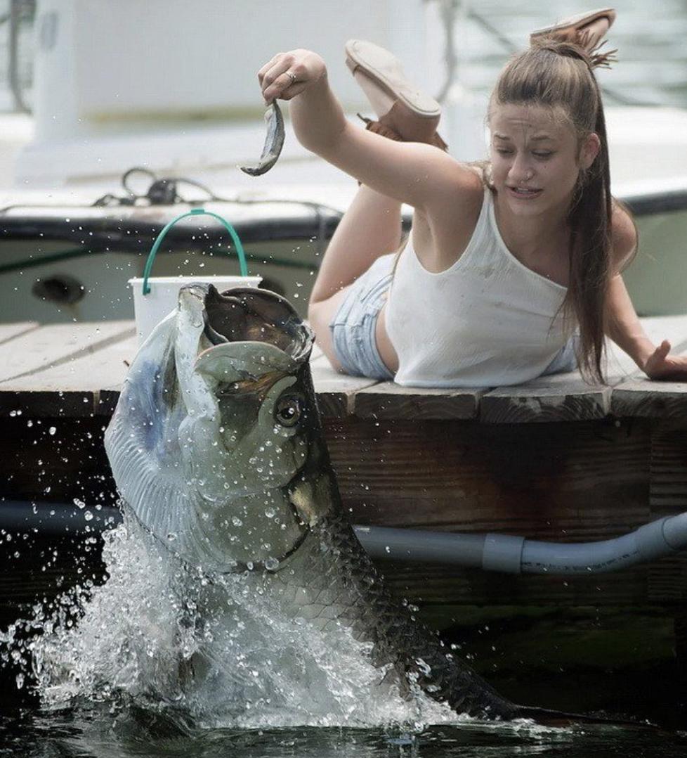 funny fishing photos