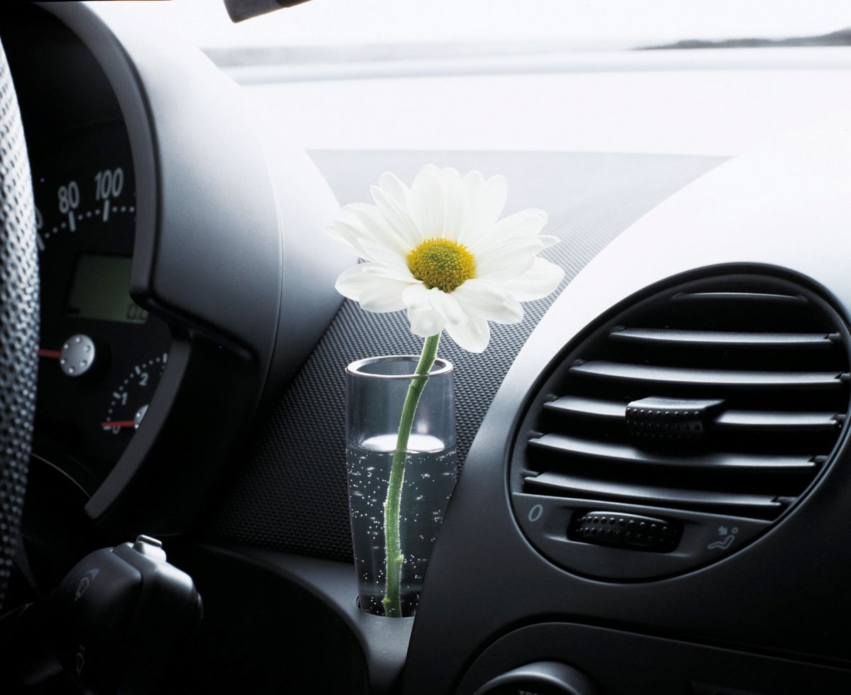 This might be why the Beetle was such a big part of the flower power movement