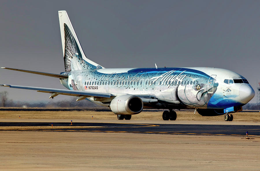 trout airplane alaska airlines